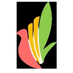 طراحی وب مجموعه آموزشی دانا